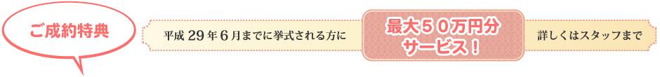 ご成約特典 平成29年6月までに挙式される方に最大50万円分サービス。詳しくはスタッフまで